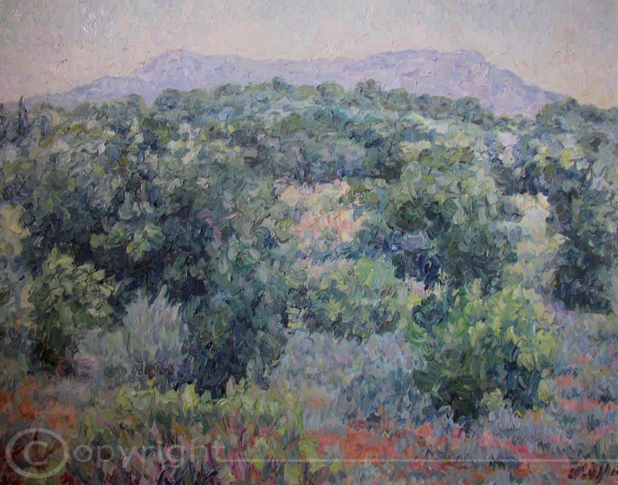 Buschlandschaft Camague 1959