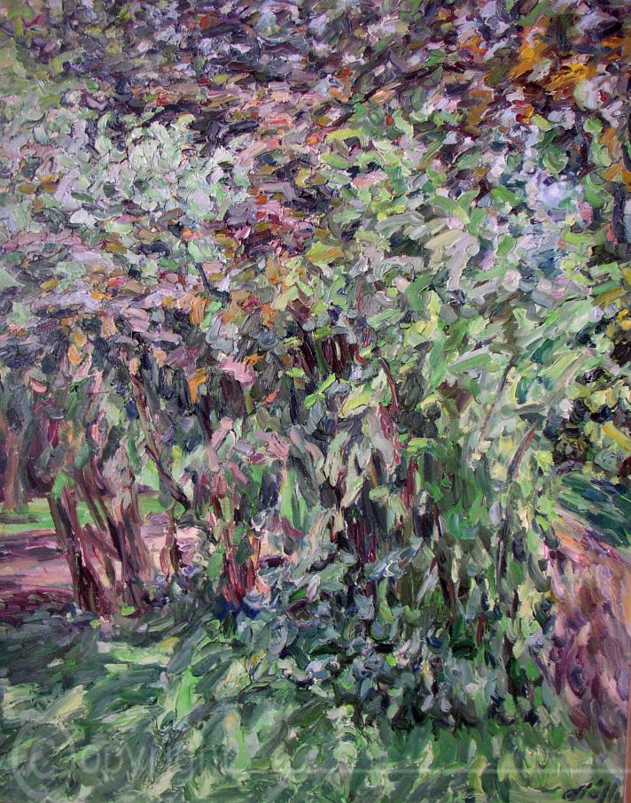 Büsche Bäume Soest 1963
